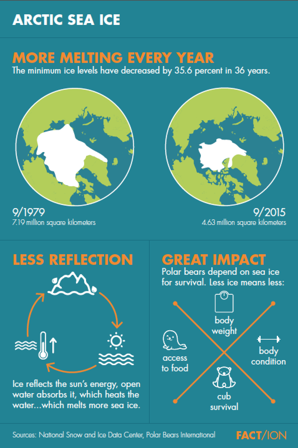 Arctic Infographic Poster