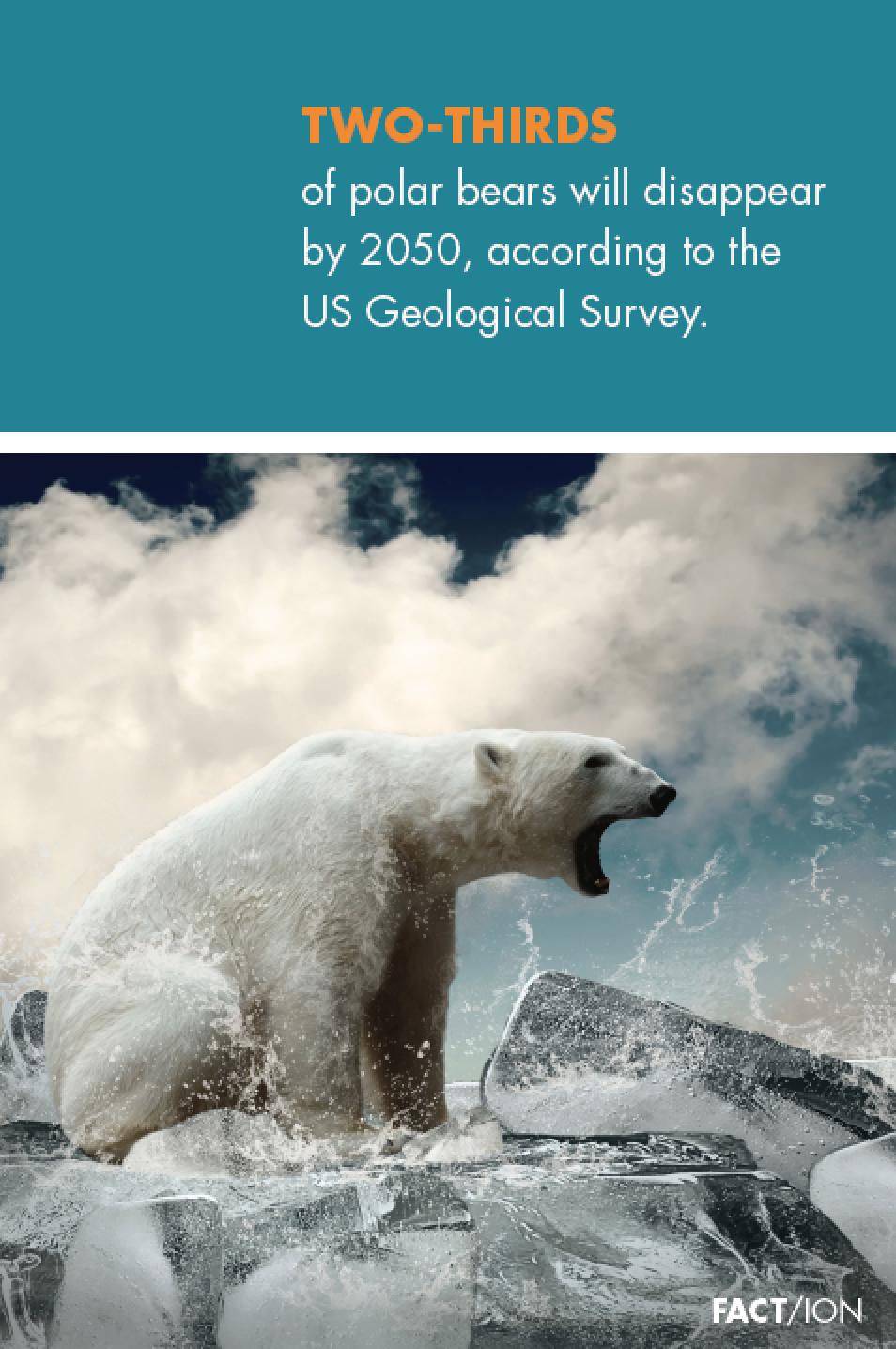 Arctic Statement Poster